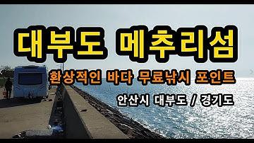 [안산]_ 대부도 메추리섬 / 무료 바다낚시 포인트 / 환상적인 바다 캠핑장 / 경기도 안산시 단원구 영흥도 선재도