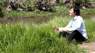 LỠ CHUYẾN ĐÒ TÂY - BẢO HƯNG