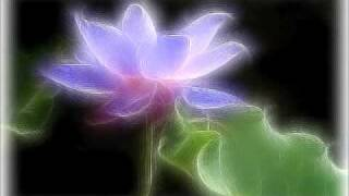The Great Compassion Mantra Song 梵音大悲咒(Lotus flowers)