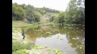 Экологическая катастрофа(Речка Балаклейка,Харьковская область,г. Балаклея., 2013-09-07T16:34:22.000Z)