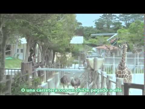 Akdong Musician (AKMU) - Anyway / Path FanMV SUB ESPAÑOL