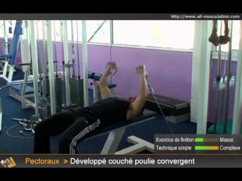 TOP 5 EXERCICES PECORAUX A LA POULIE. All Musculation 835fca324c8