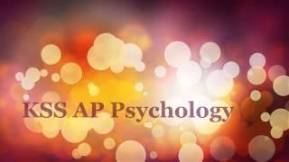 ap psychology unit 13 therapy part 2