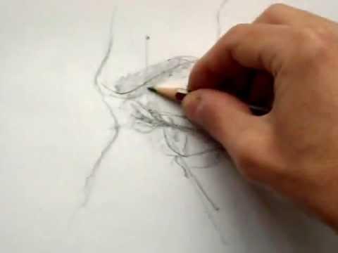 Dibujando el ojo y su perfil.wmv - YouTube