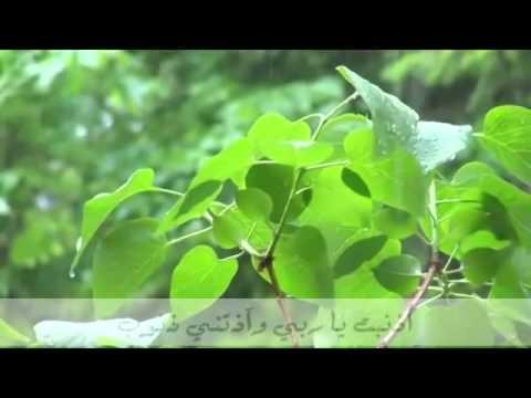 مناجاة   بك استجير   محمد المقيط ~нашиды