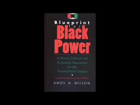 Mhenga Amos N.  Wilson: Developing the Undeveloped African Mind