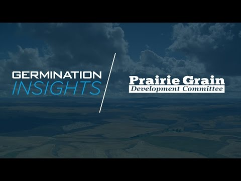 Germination Insights: PGDC Fuels the Industry with New Cultivars