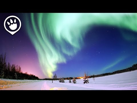 Southern Lights (Aurora Australis): When & Where To Catch It?