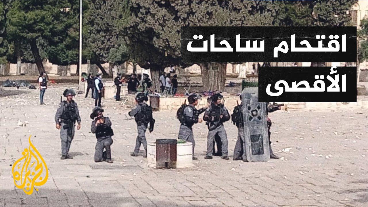 عاجل - استغاثات حية من داخل المسجد الأقصى  - نشر قبل 24 ساعة