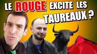 IDÉE REÇUE #21 : Le rouge excite les taureaux (feat. Schoumsky) thumbnail