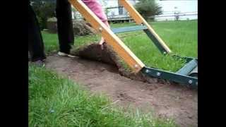 How to Use a Sod Cutter How to cut sod for landscaping gardening cement Edge sidewalks