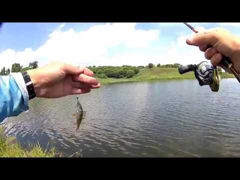 Видео Ловля мирной рыбы на микро джиг