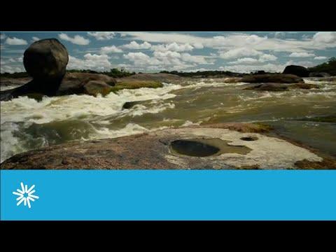 Video Wildlife Conservation Society WCS Colombia - Fundacion Mario Santo Domingo por la conservación