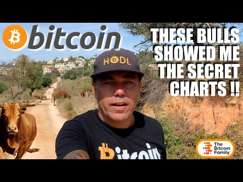 WOOW!!! THESE BITCOIN BULLS SHOWED ME SECRET CHARTS!! YOU MUST SEE THESE CHARTS ASAP!!