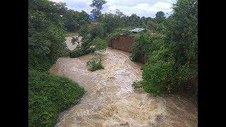 Centre assures all support to flood-hit Nagaland: Nagaland news