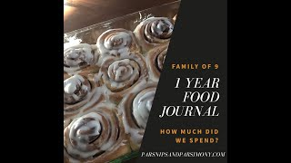 How We Fed Our Family Of 9 For $5,803.16 1 Year Food Journal