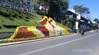 Flower festival in Da Lat