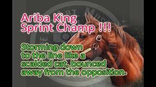 2004 GRAND SPRINT CHAMPIONSHIP ARIBA KING