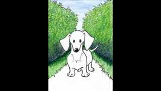 Kiniart Dachshund Dog Art - Start To Finish