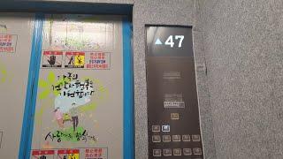 서울특별시 성동구 성수도…