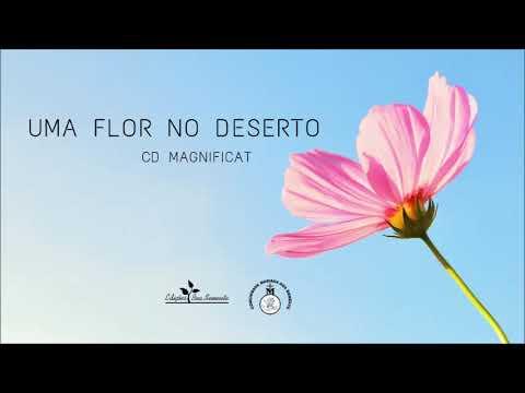Uma Flor No Deserto Ministério Boa Semente Letrascom
