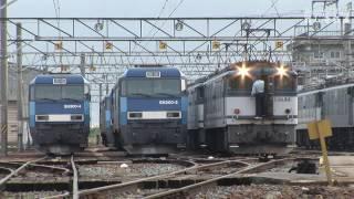 機関車 EF64&EH200-1,2号機,901号機 塩尻機関区篠ノ井派出に集結 HDV 818