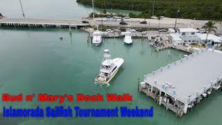 Bud N' Mary's 'Dock Walk' - Islamorada Sailfish Tournament Weekend