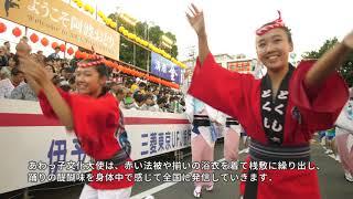 あわっ子文化大使による「あわ文化」の紹介(「あわ文化」総集編)