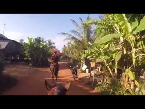 Travelling Cambodia: Horse Riding in Siem Reap on Day 6