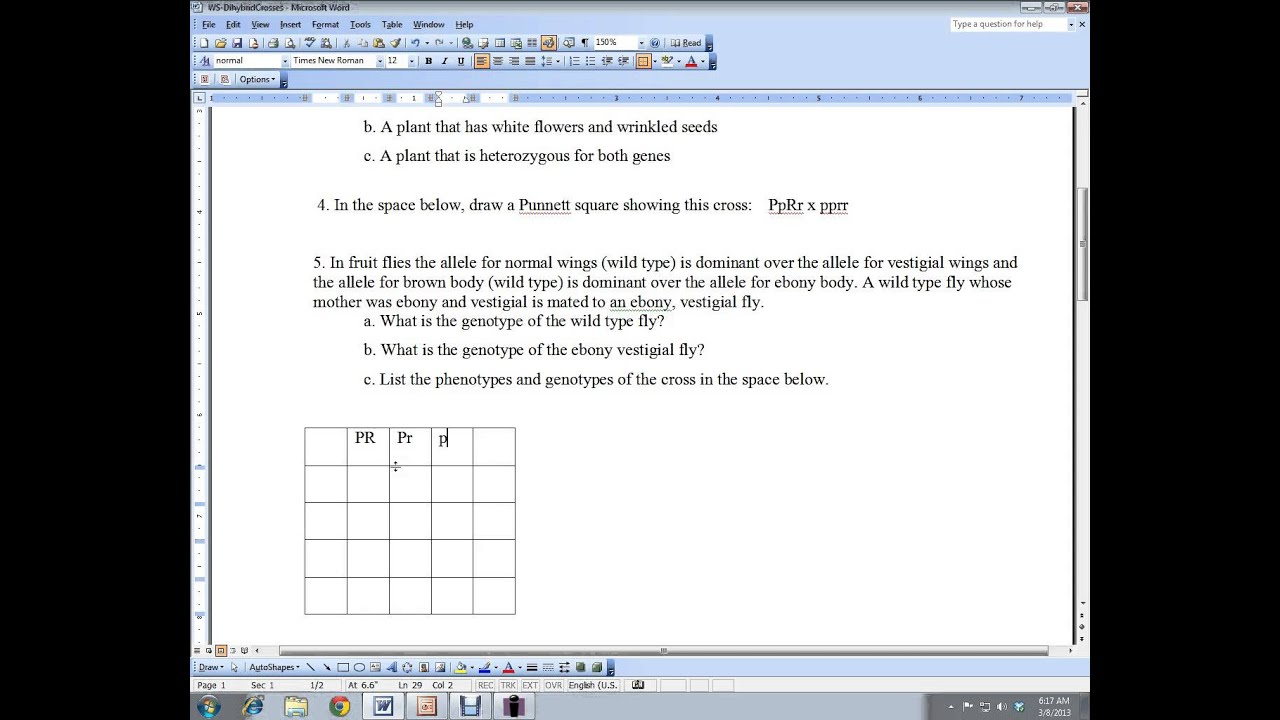 Dihybrid Cross Practice Worksheet Youtube