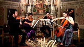 Beethoven - String quartet in A minor, op 132 - 3rd mvmt (part 1)