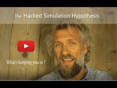 The hypothesis ya simulation