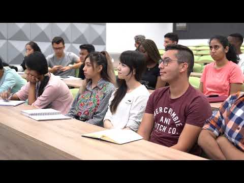 Study the LLM International Commercial Law in Dubai