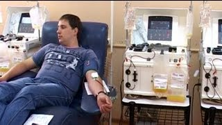 Как в Беларуси берут кровь у доноров, видео