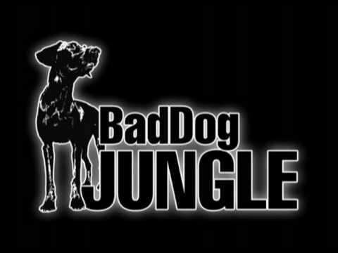 Ragga Scum + DJSKdaJunglist feat Negro Scoe - Sick With It - BadDog Jungle