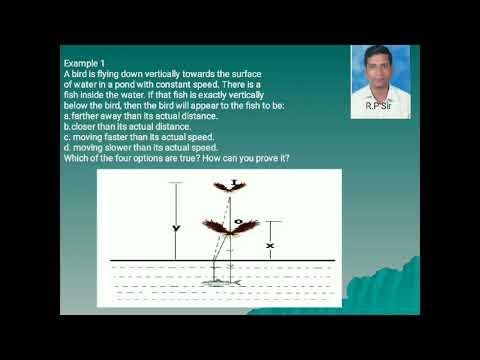 Refraction Of Light (Bird-fish Problem)