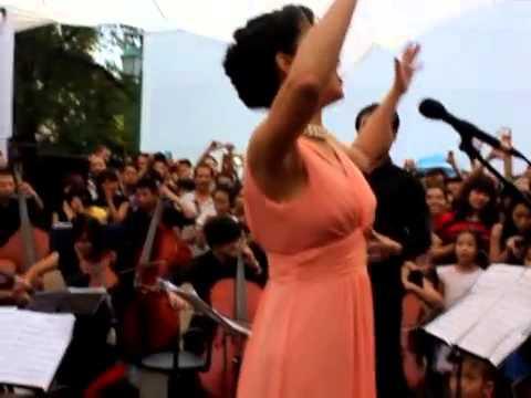 Nhớ về Hà Nội - Hồng Nhung (LUALA concert 2012)
