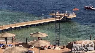 Grand Rotana Resort Spa 5 отель в Египте Шарм Эль Шейх сезон 2021 краткий обзор