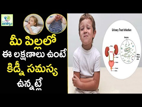 Signs and Common kidney problems in children  - Mana Arogyam Telugu health Tips