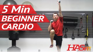 5 Minute Easy Workout! Low Impact Cardio Exercises for Beginners or Warm Up Cool Down | HASfit