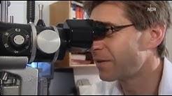 Schlaganfall- und Herzinfarkt-Vorsorge,  AugenarztpraxisHamburg-Blankenese