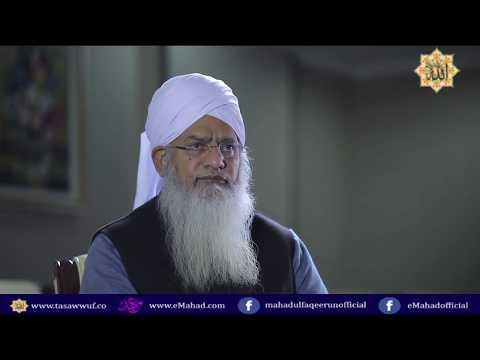 Tashkent Interview   Hazrat Maulana Shaykh Zulfiqar Ahmad Naqshbandi  DB