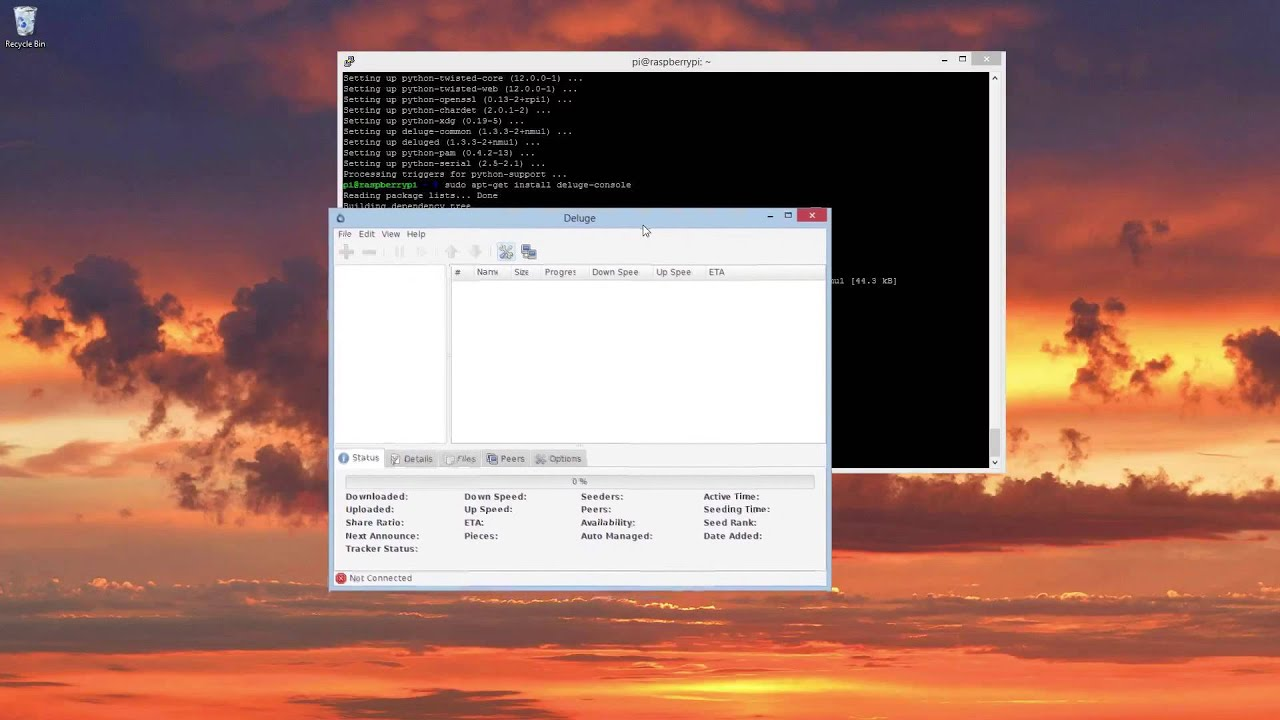 How To - A Very Beginner's Raspberry Pi Always On Seed-box (Using Deluge)
