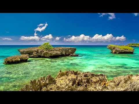Relaxing Music with Nature Sounds for Meditation, Yoga, Stud