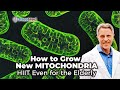 Not doing HIIT? Watch your mitochondria die - and take you with them.