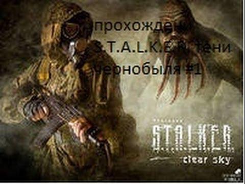 Обзор Игры S.T.A.L.K.E.R. Зов Припяти По Интернету
