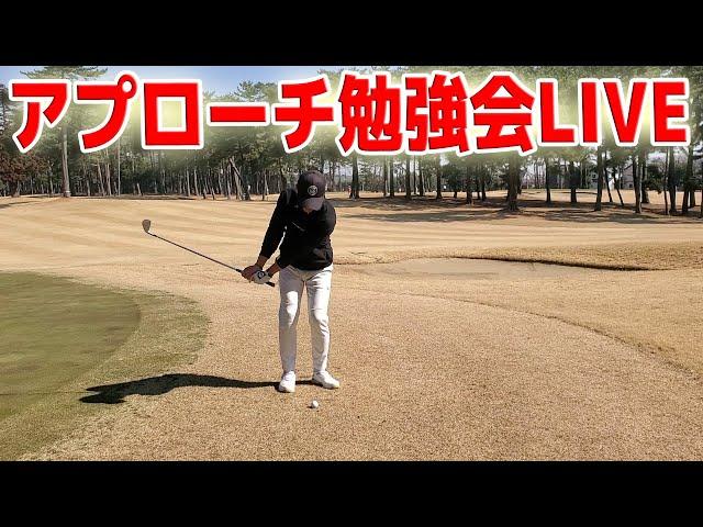 アマチュアゴルファーのアプローチ勉強会!【毎日LIVE74日目】