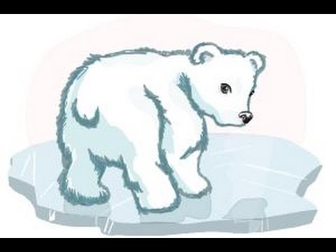 How to draw a baby Polar bear - YouTube