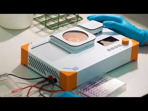 BENTO LAB - AFFORDABLE DNA ANALYSIS AND MOLECULAR BIOLOGY FOR ALL