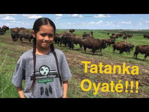 Marty Indian School Language Preservation